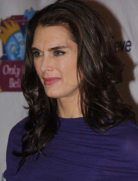 Dr U's Patient wanted an Dr UGraft eyebrow transplant result that is inspired by the eyebrow of Brooke Shields shown in this Photo.