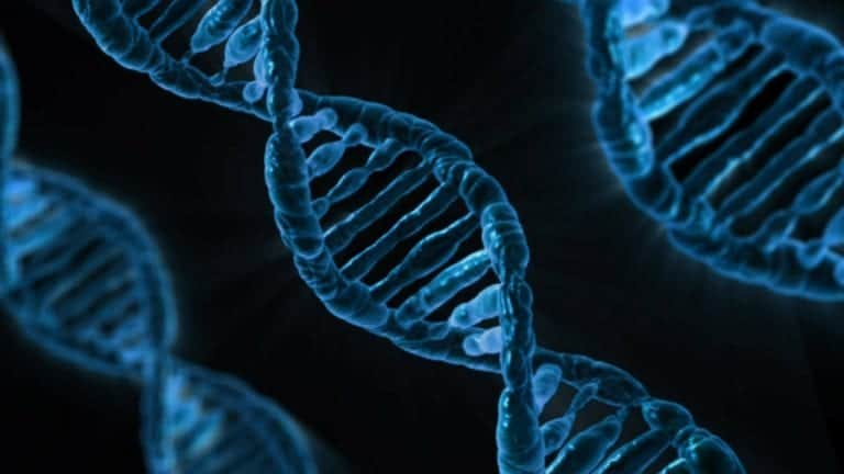 Genetics and hair loss may be influenced by environmental factors to a greater extent than previously thought as suggested by studies on identical twins and hair loss.